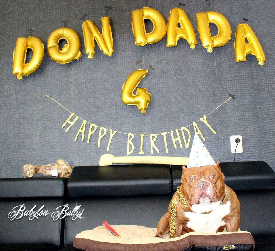 dondada4