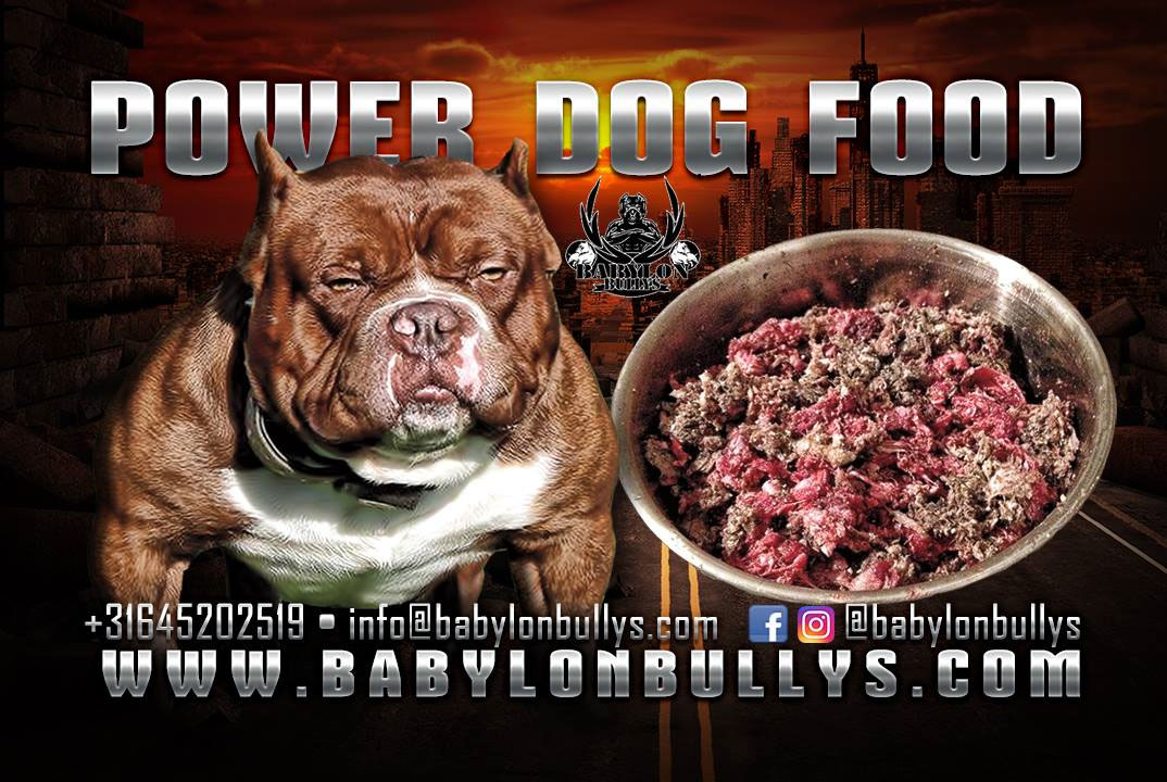 powerdogfood